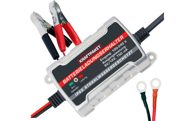 Dino Kraftpaket Batterie Erhaltungsladegerät 6 V /12 V 750 mA
